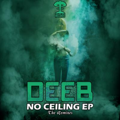 Deeb - No Ceiling Remxes