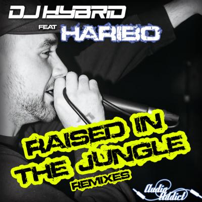 DJ Hybrid Ft. Haribo - Raised In The Jungle Remixes
