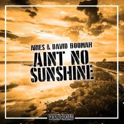 Aries & David Boomah - Aint No Sunshine